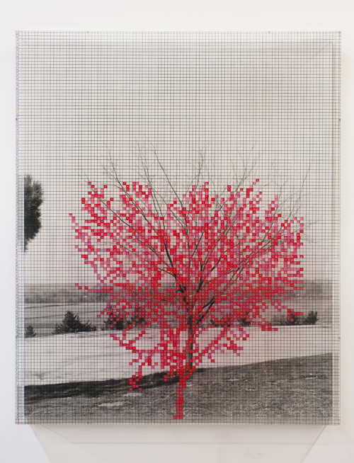 in Pictures for 'Charles Gaines: Gridwork 1974–1989' at The Studio Museum in Harlem. Image for Charles Gaines, Numbers and Trees V, Landscape #1, 1989, Acrylic sheet, acrylic paint, watercolor, photograph, 46 5⁄8 × 38 5⁄8 in. Collection of Peter Gelles and Eve Steele Courtesy the artist and Susanne Vielmetter Los Angeles Projects. Photo: Robert Wedemeyer