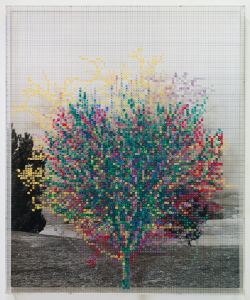 in Pictures for 'Charles Gaines: Gridwork 1974–1989' at The Studio Museum in Harlem. Image for Charles Gaines, Numbers and Trees V, Landscape #6, 1989, Acrylic sheet, acrylic paint, watercolor, photograph, 46 5⁄8 × 38 5⁄8 in. Collection of Marc Selwyn. Courtesy the artist and Susanne Vielmetter Los Angeles Projects. Photo: Robert Wedemeyer