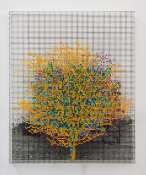 in Pictures for 'Charles Gaines: Gridwork 1974–1989' at The Studio Museum in Harlem. Image for Charles Gaines, Numbers and Trees V, Landscape #8: Orange Crow, 1989, Acrylic sheet, acrylic paint, watercolor, photograph, 46 5⁄8 × 38 5⁄8 in. Collection of Bruce Bower. Courtesy the artist and Susanne Vielmetter Los Angeles Projects. Photo: Robert Wedemeyer
