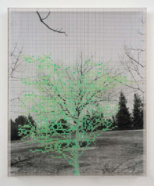 in Pictures for 'Charles Gaines: Gridwork 1974–1989' at The Studio Museum in Harlem. Image for Charles Gaines, Numbers and Trees VI, Landscape #1, 1989, Acrylic sheet, acrylic paint, watercolor, silkscreen, photograph, 46 5⁄8 × 38 5⁄8 in. Collection of Sheri and Arnold Schlesinger. Courtesy the artist and Susanne Vielmetter Los Angeles Projects. Photo: Robert Wedemeyer