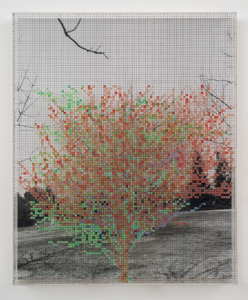 in Pictures for 'Charles Gaines: Gridwork 1974–1989' at The Studio Museum in Harlem. Image for Charles Gaines, Numbers and Trees VI, Landscape #3, 1989, Acrylic sheet, acrylic paint, watercolor, silkscreen, photograph, 46 5⁄8 × 38 5⁄8 in. Collection of Michael and Joyce Ostin. Courtesy the artist and Susanne Vielmetter Los Angeles Projects. Photo: Robert Wedemeyer
