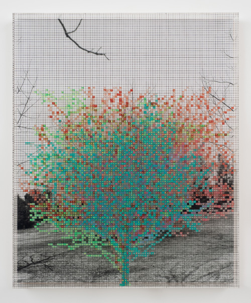 in Pictures for 'Charles Gaines: Gridwork 1974–1989' at The Studio Museum in Harlem. Image for Charles Gaines, Numbers and Trees VI, Landscape #5, 1989, Acrylic sheet, acrylic paint, watercolor, silkscreen, photograph, 465⁄8×385⁄8in. Collection of Gail and Irving Weintraub. Courtesy the artist and Susanne Vielmetter Los Angeles Projects. Photo: Robert Wedemeyer