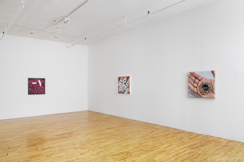 in Pictures for Gina Beavers at Clifton Benevento. Image for Installation view of Gina Beavers: 'Re-Animator' at Clifton Benevento, 2014. Courtsey the artist and Clifton Benevento