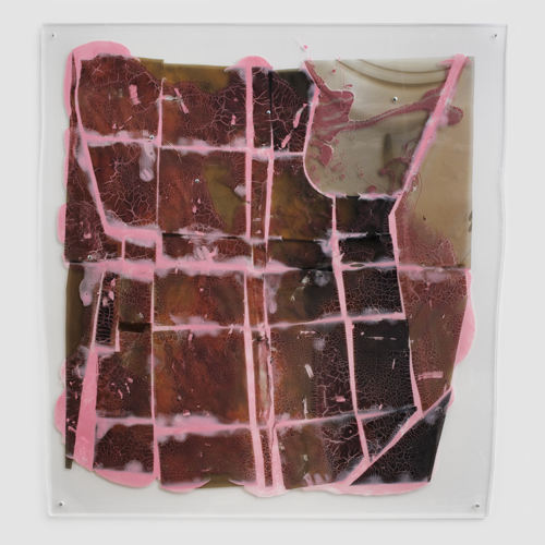 "in Pictures for Sara Greenberger Rafferty at Rachel Uffner Gallery. Image for Sara Greenberger Rafferty, ""Untitled,"" 2014, acrylic polymer and inkjet prints on acetate on Plexiglas, and hardware, Irregular: 60 x 57 1/2 x 1/2 inches (152.4 x 146.1 x 1.3 cm). Courtesy of Rachel Uffner"