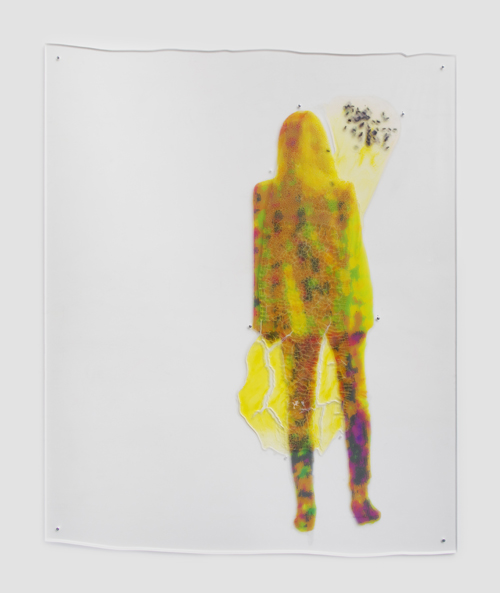 "in Pictures for Sara Greenberger Rafferty at Rachel Uffner Gallery. Image for Sara Greenberger Rafferty, ""Untitled,"" 2014, acrylic polymer and inkjet prints on acetate on Plexiglas, and hardware, Irregular: 73 1/2 x 60 1/4 x 1/2 inches (186.7 x 153 x 1.3 cm). Courtesy of Rachel Uffner"