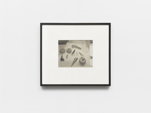 in Pictures for 'The Curve' at Wallspace. Image for Jan Groover, 'Untitled,' 1984, platinum-palladium contact print, 8 x 10 inches. Courtesy of Wallspace