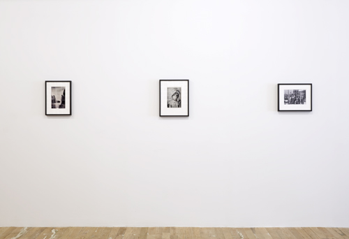 in Pictures for Lynn Hershman Leeson at Bridget Donahue. Image for Installation view of 'Lynn Hershman Leeson: Origins of the Species' at Bridget Donahue, New York, February 19, 2015 - April 05, 2015. Courtesy Bridget Donahue, New York