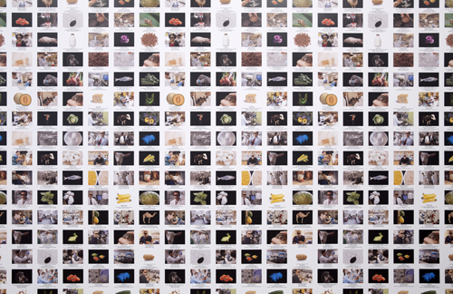 in Pictures for Lynn Hershman Leeson at Bridget Donahue. Image for Lynn Hershman Leeson, 'GMO Animals, Crops, Labs (The Infinity Engine),' 2014, Wallpaper, Dimensions variable, Unique. Courtesy Bridget Donahue, New York