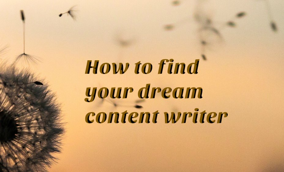 How to find your dream content writer