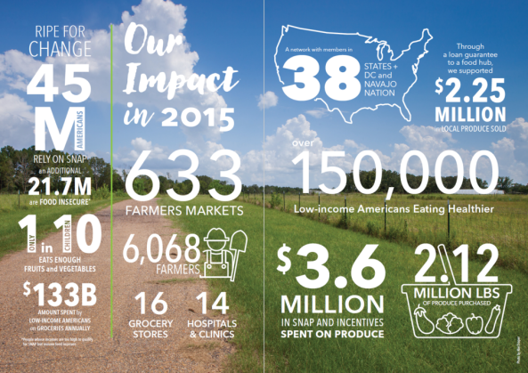 Annual Report Infographic
