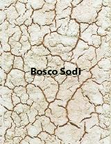 boscosodi2.jpg