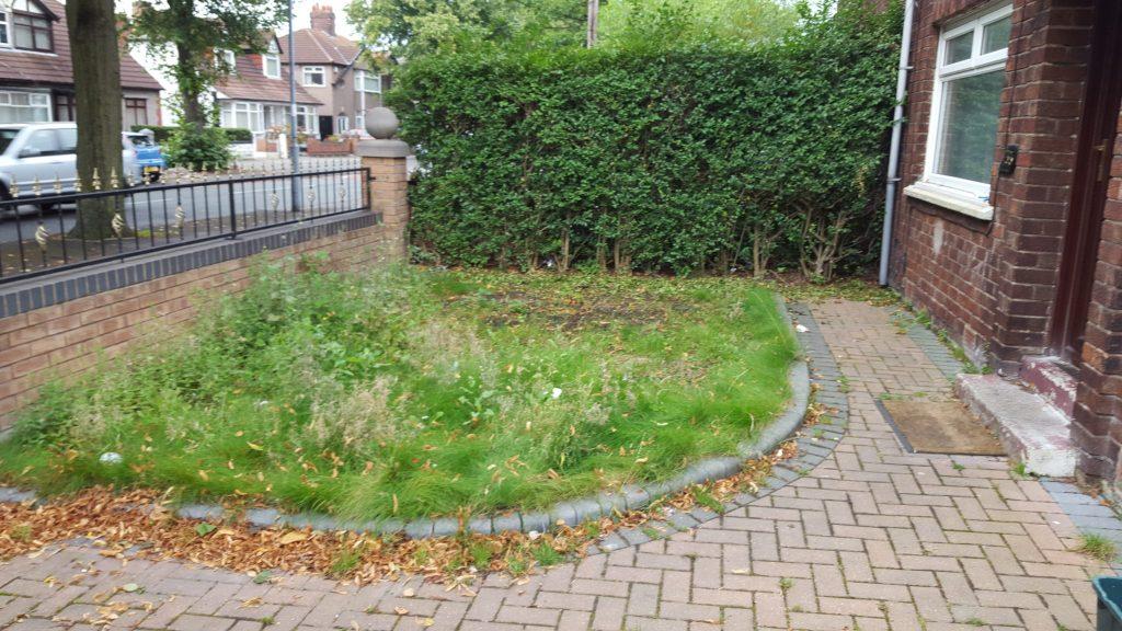 cheapest artificial grass