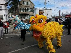 Hung Gar Kung Fu & Lion Dance
