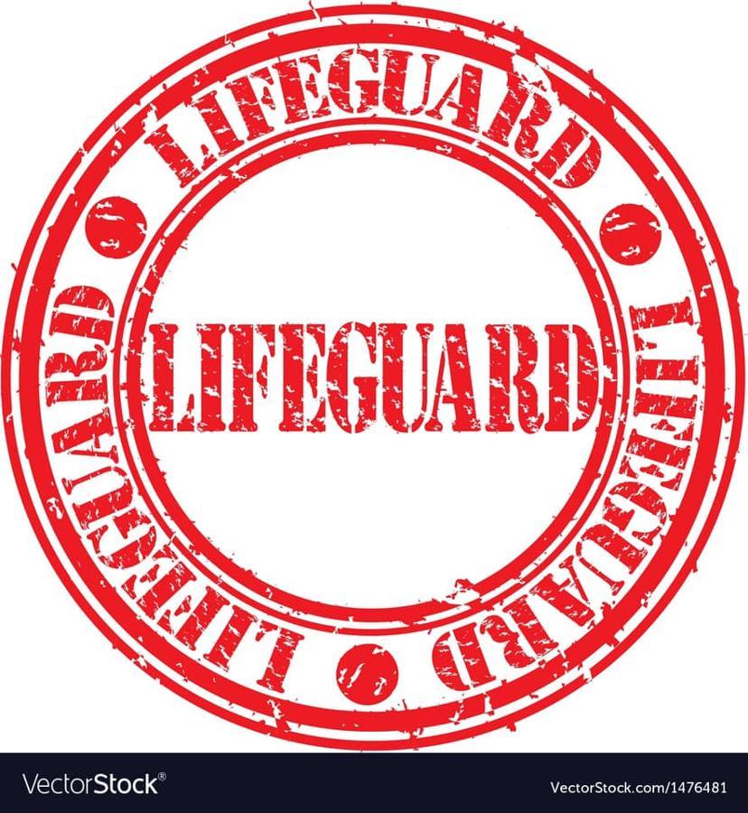 -Lifeguards Birthday Bash