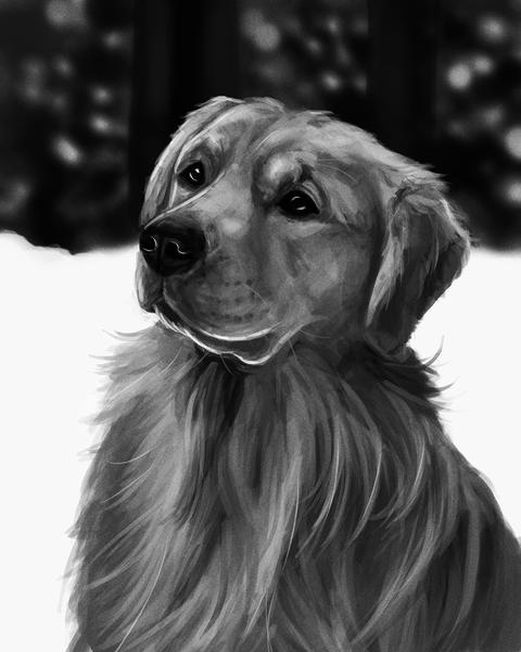 Black/white animal painting