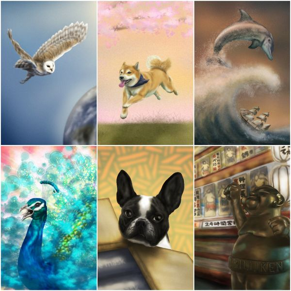 Beautiful colored animals/creatures