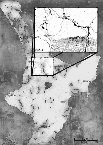 Inked Tolkien style fantasy map (greyscale only)