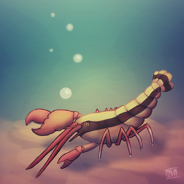 Full Coloured - Sea Creature