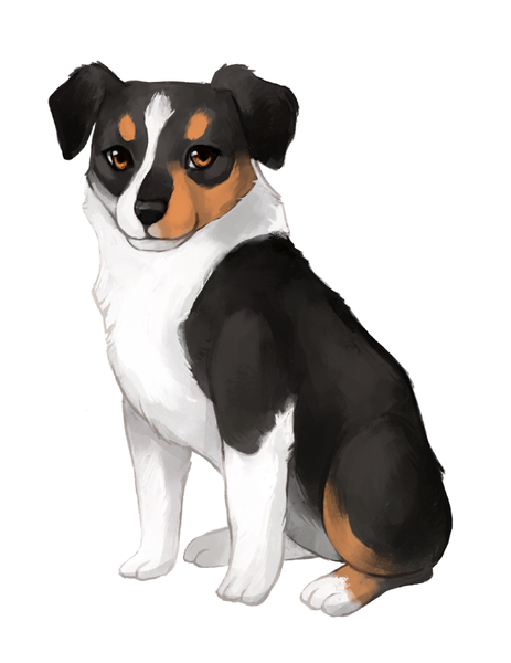 Stylized pet illustration