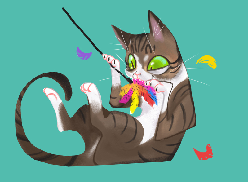 Funny pet drawings and illustrations