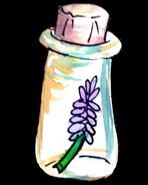 colored picture of bottle