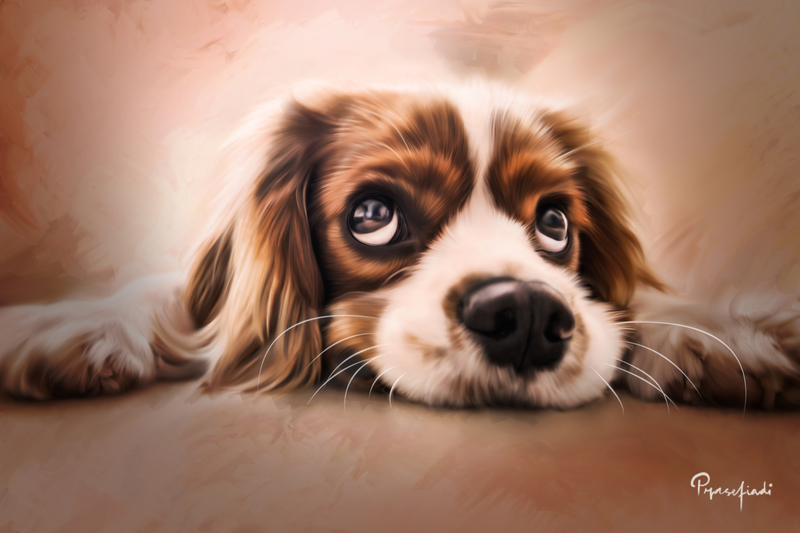 Pets & Animals Digital Painting