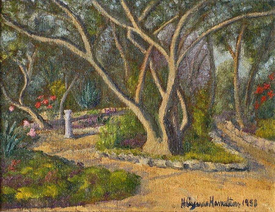 Canon Grafiti's Garden