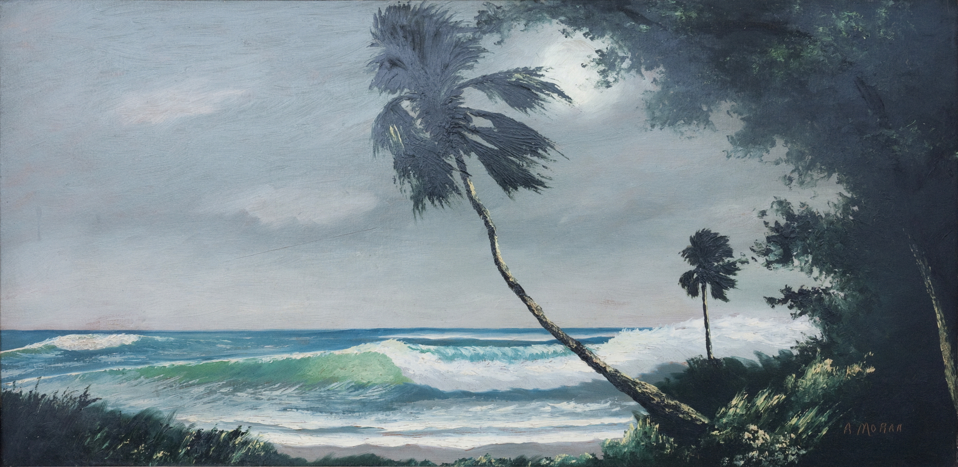 Palms On The Ocean