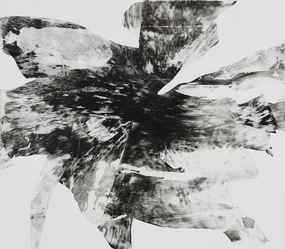 Black Flower 6