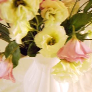 Put An Attic On The Shelf (Wavering Flower)