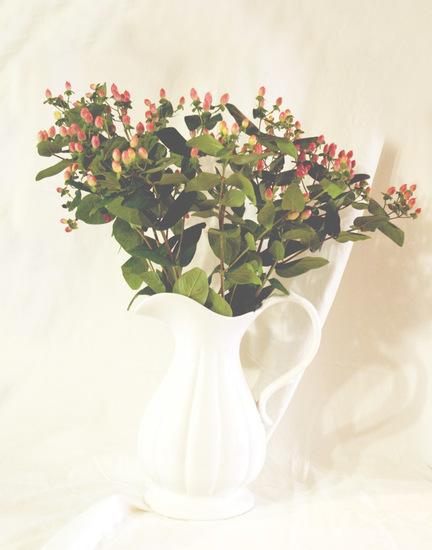 Put An Attic On The Shelf (Blurry Flower)