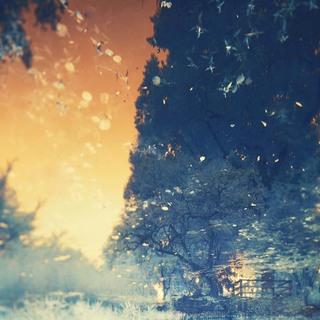 Tree of Dream
