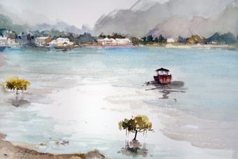 Tai O Fishing Villiage - Mangrove