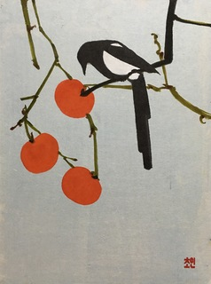 A korean magpie. no 2