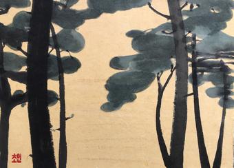 A pine wood.