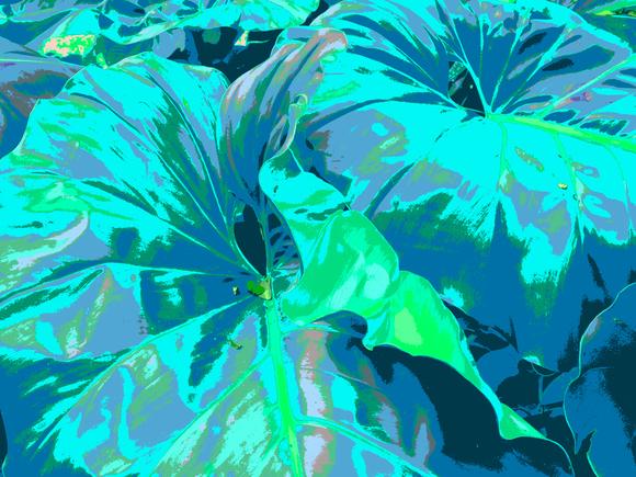 GIANT, (BLUE), 120 x 160 cm