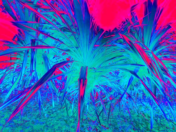 BLUE PALMS AT NIGHT, 120 X 160 CM