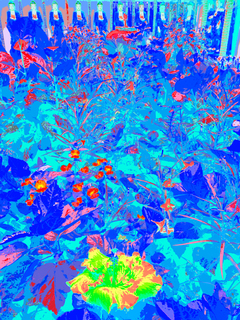 GREEN HIBISCUS FLOWER AT KEK LOK SI, 120 X 160 CM