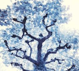 Blue Davy Jones
