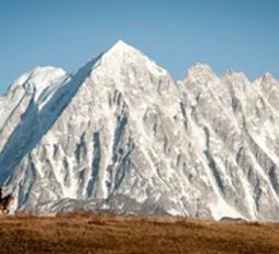 Beneath Yala Mountain