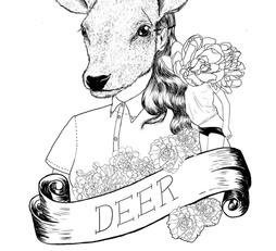The Menagerie - Deer