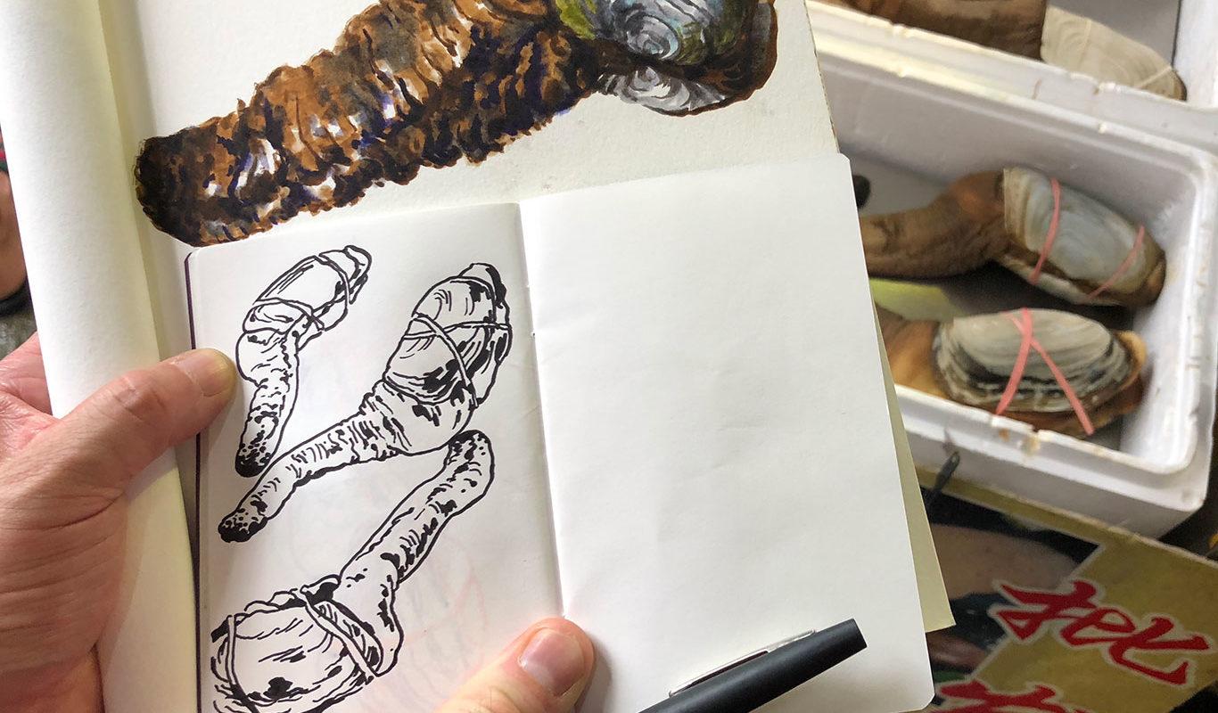 Drawings, Clara Lieu & Casey Roonan