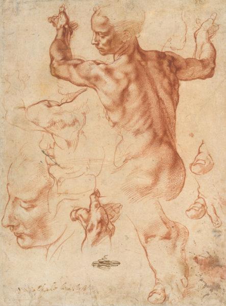 Libyan Sybil Drawing, Michelangelo