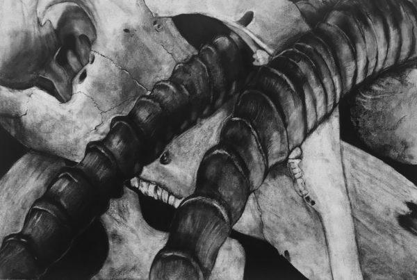 Charcoal Drawing, Kyra Beal