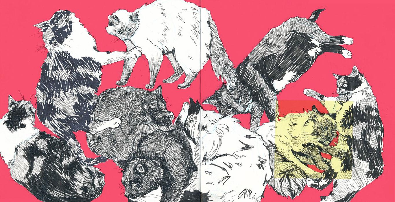 Pen Drawing of Cats, Kyra Beal