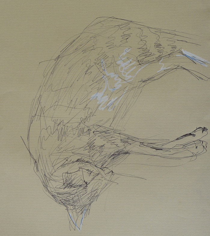 Gesture Drawing, Teo Ica