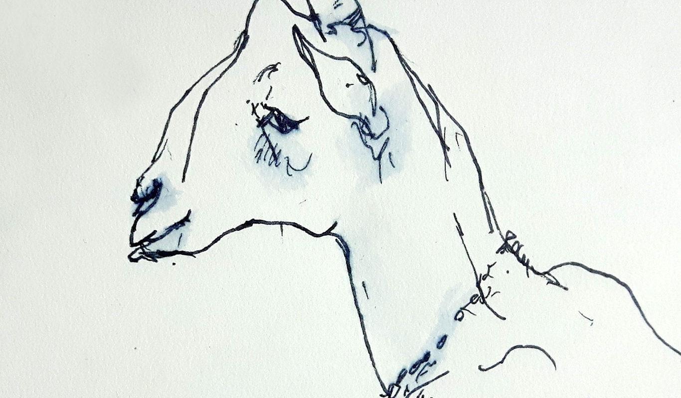 Gesture Drawing, Helen McCusker