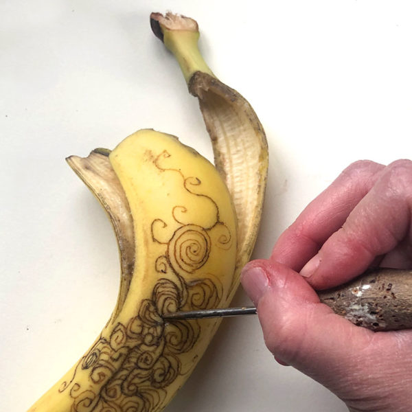 Drawing on a Banana with an Etching Needle