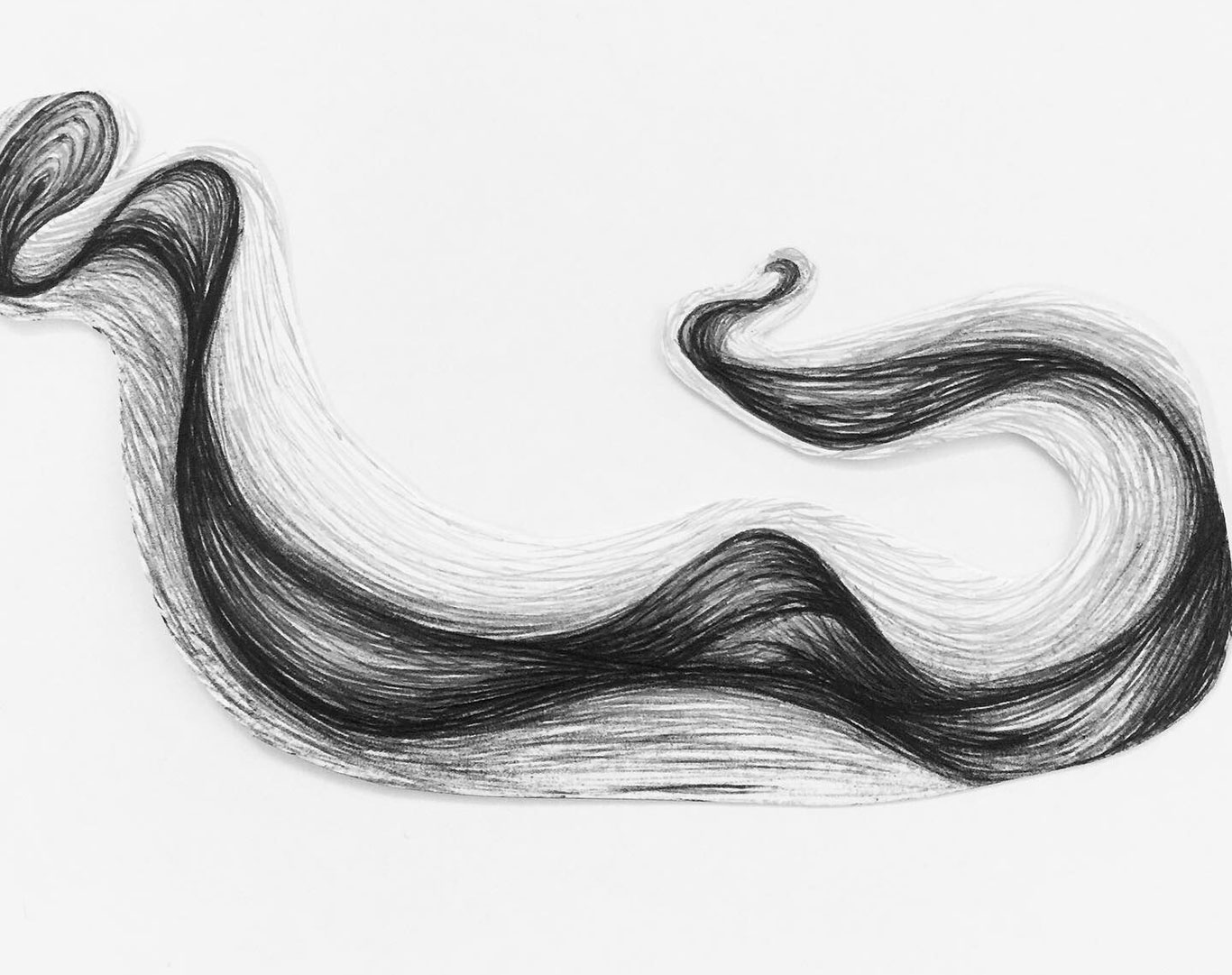 Brenda Peters, Ballpoint Pen Drawing
