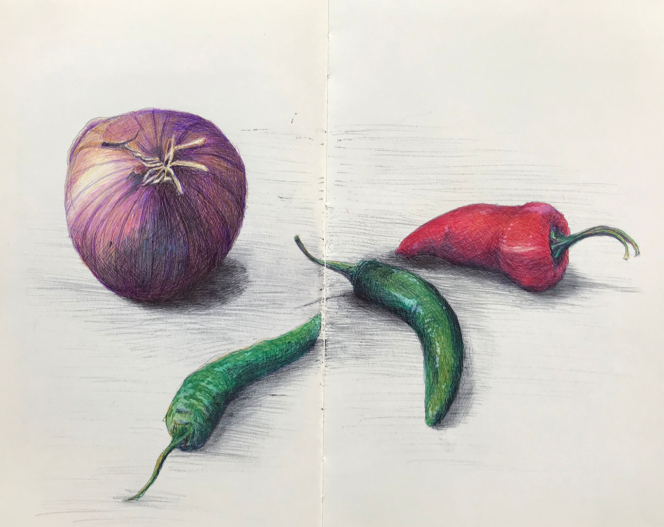 Suzanne Hughes, Ballpoint Pen Drawing